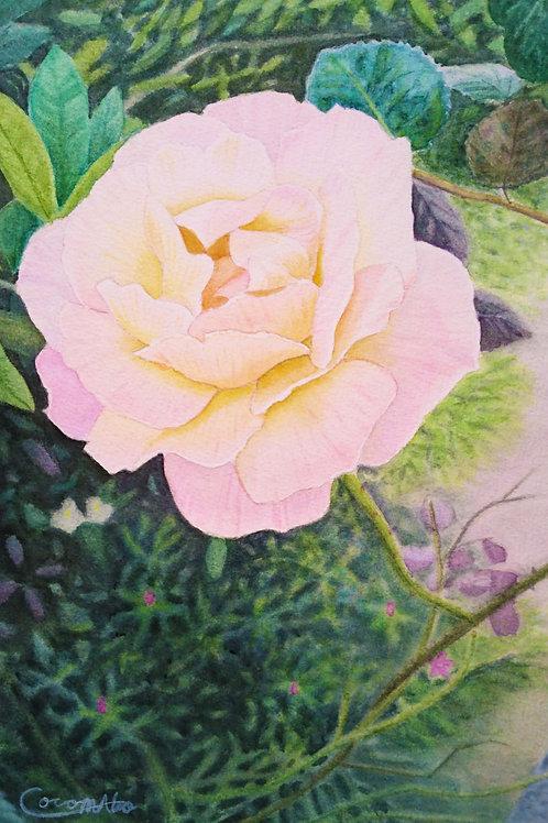 「庭先のバラ」スマホ用壁紙