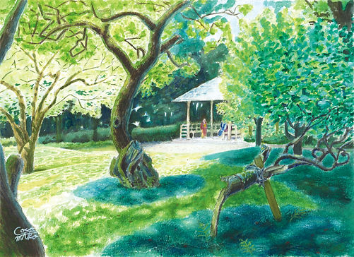 森の木々と木洩れ日の水彩画