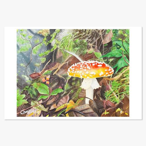 「荒野の妖精」ポストカード