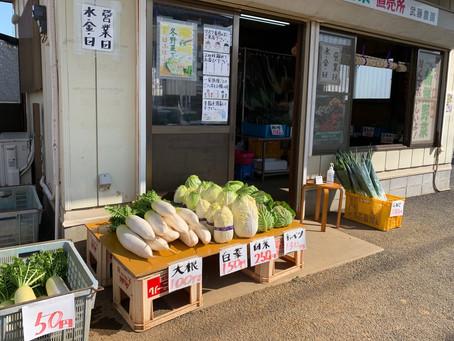 本業の農業と野菜直売について🍀
