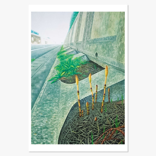 「路上の春」ポストカード