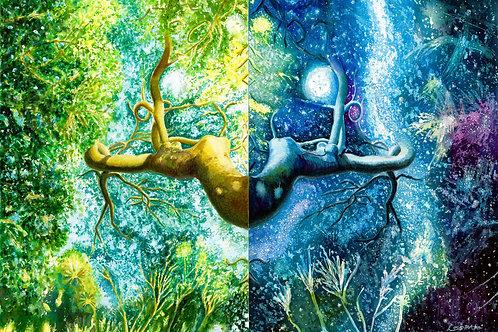 「生命の中の宇宙」PC用壁紙