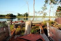 lake redbrook bush walking trail