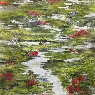 Lily Ponds - David Booth