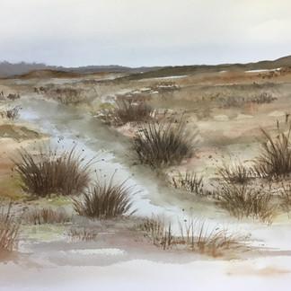 Button Grass Plains - Lorraine Snadden