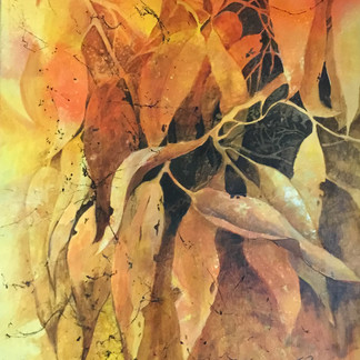 Eucalyptus Celebration  - Jane Payne
