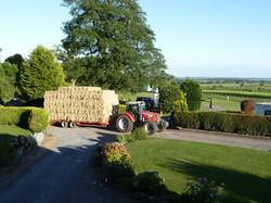 Bringing the hay in