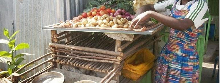 Vegetable Business in Dembidollo