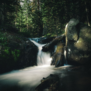 Forest Waterfall.