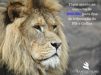 PGFN recomenda entendimento do STJ sobre insumos do PIS e Cofins