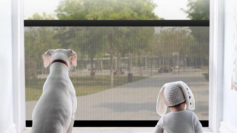 Pet Door Bar Fence