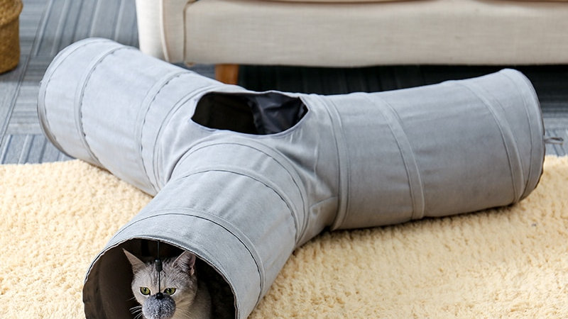Foldable Cat Tunnel Indoor and Outdoor