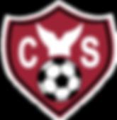 youth-soccer_emblem.png