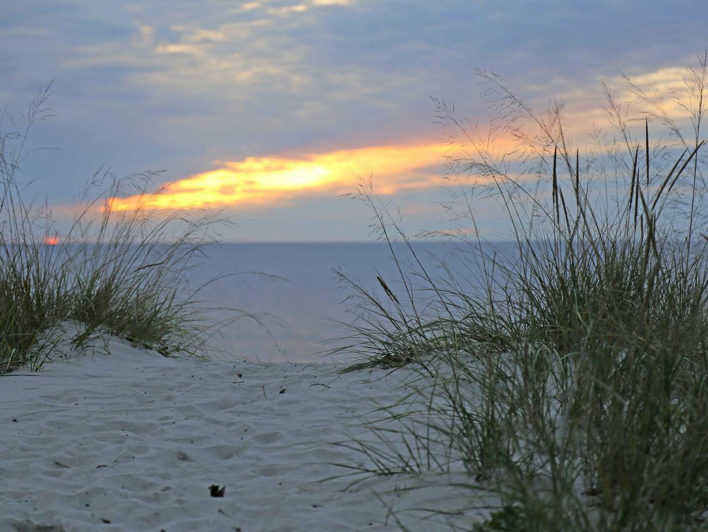 Charlevoix Sand Dunes
