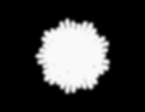 new-years-EAV-logo-12.07.16.png