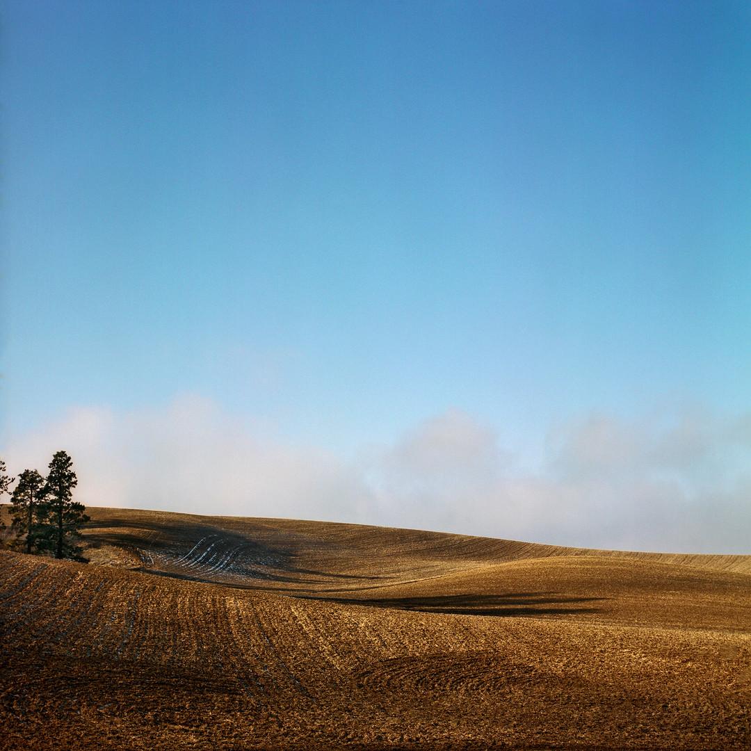 The Palouse, Eastern Washington