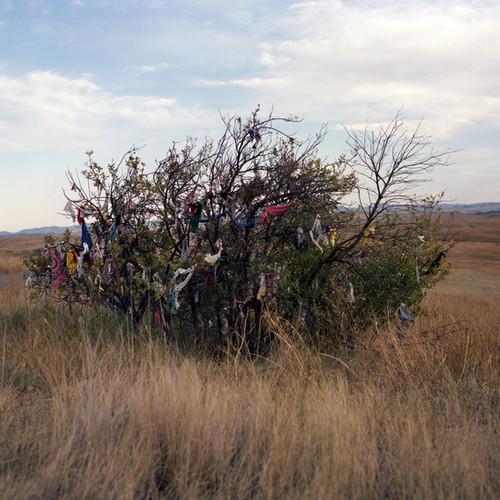 Little Bighorn Battlefield, Montana
