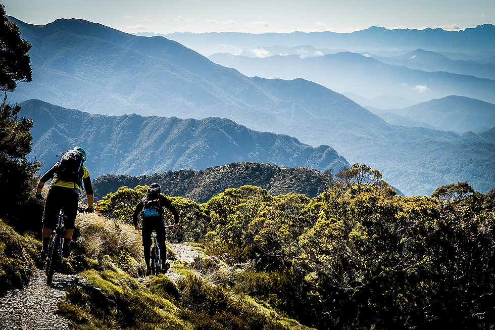 new zealand, mountain biking, trail riding, sounds, housemartin, overnighters, tours, south island, anka martin, sven martin, nelson, backcountry, huts, sunshine