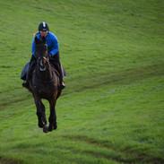 Galloping work