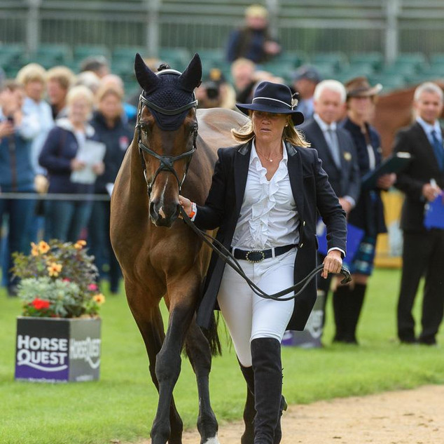 Burghley trot up 2018.