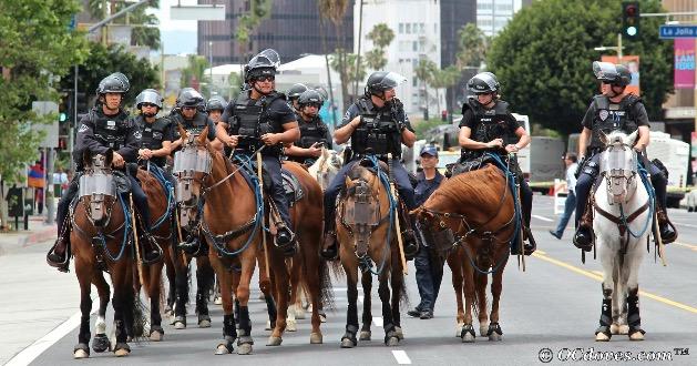 Demonstration in LA