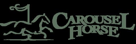 carousel horse tack.png