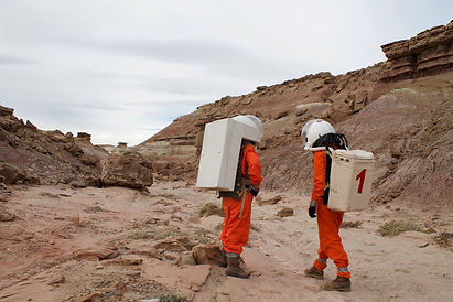 Analogue Mars Missions