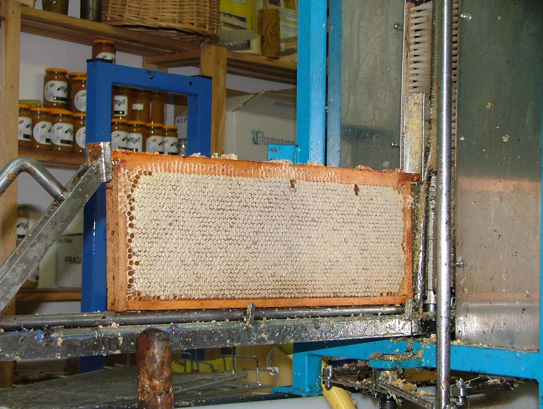cadre de miel operculé