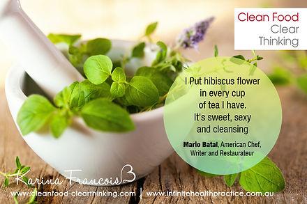 Infinite Health Practice | Karina Francois | Hibiscus flower