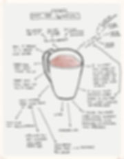 Infinite Health Practice | Karina Francois | Why tea is magical