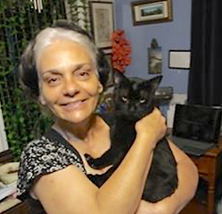 Black cat found 13 days lost cat finder