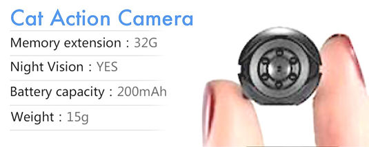 CAT ACTION CAM finger scale_edited_edite