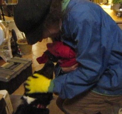 Lost cat found Austin pet detective.jpg
