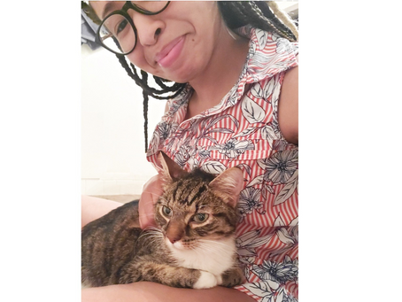 After 49 days missing, this escaped  indoor cat is found and home.