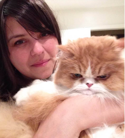 Amy Haden Found cat Toronto