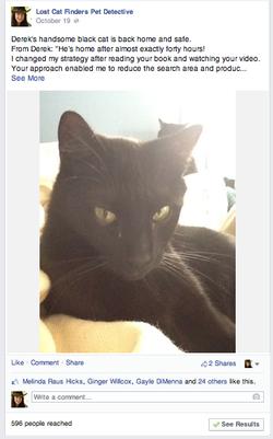 Blackcat FB.png
