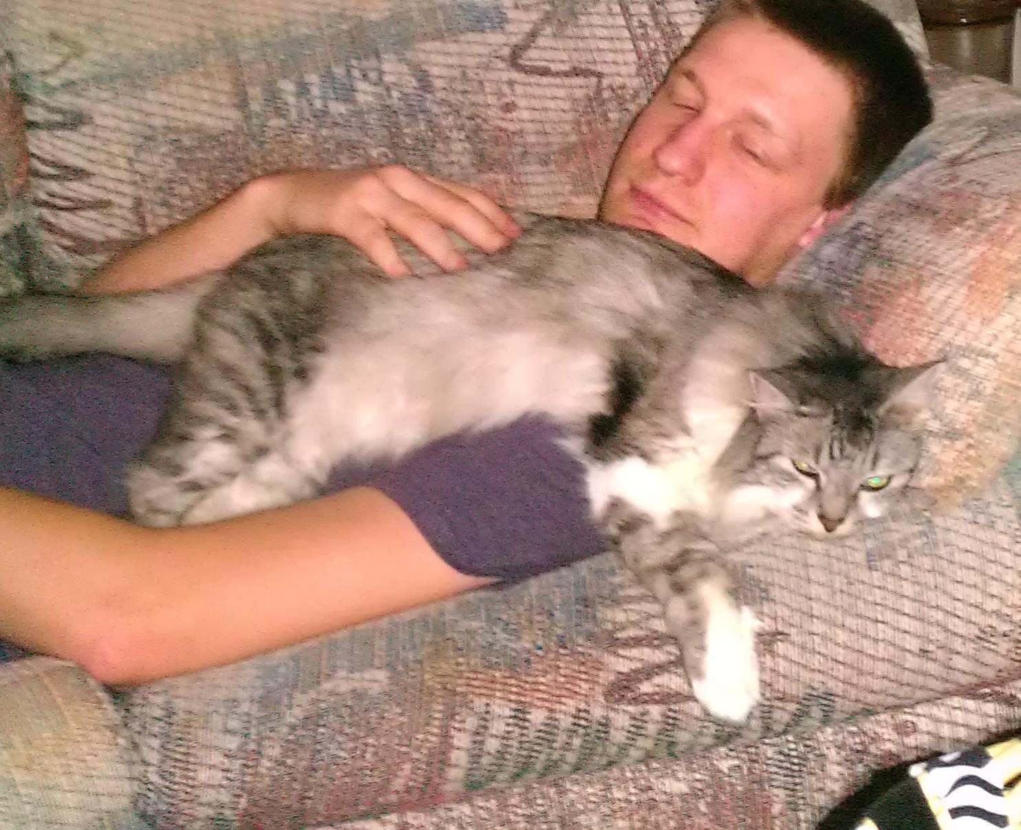 Jackson FOUND cat.jpg
