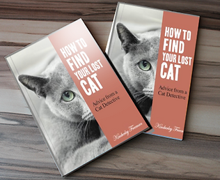 cat finder pet detective tips.png