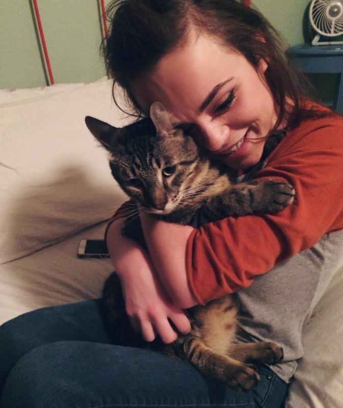 Case Found cat Austin.jpg