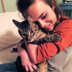 lost cat found Finn