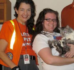 Lost Cat Finder Found Cat Austin JacksonCopr.jpg