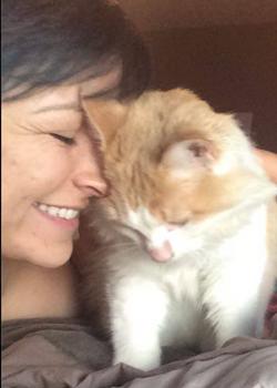 lost cat found after 8 months in Austin
