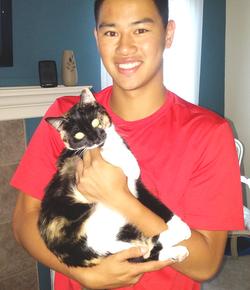 NC lost cat found under trailer