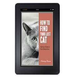 Lost cat book on Kindle LCF.png