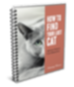 Lost Cat book spiral vector mock.png