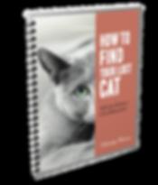 Lost Cat book spiral vector mock.png