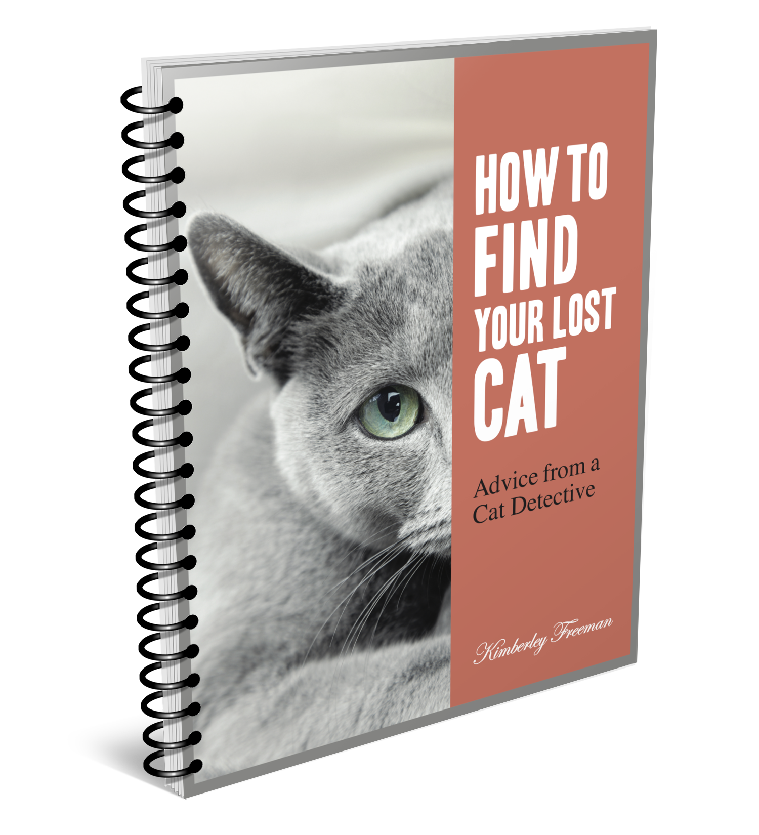 How to Find a Lost Cat | Lost Cat Finder | United States