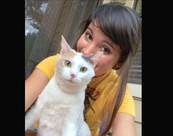 Lost Cat found by pet detective