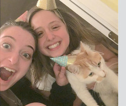 pet detective gets lost cat found after 29 days missing