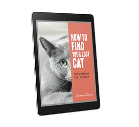 Lost cat tips on ipad.png